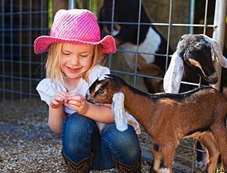Hobby Farm-goat_Thumbnail